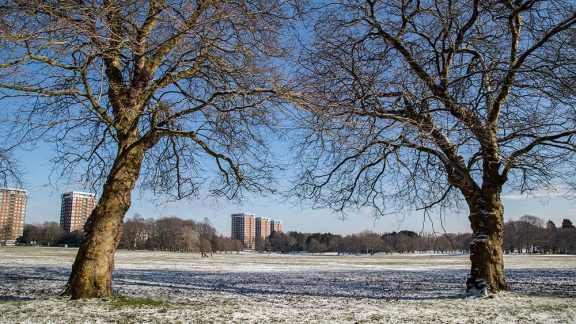 a snowy park with residential flats in the background