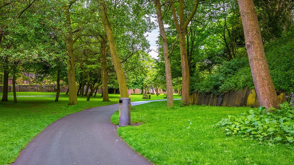 a cycle track going through a grassy wooded park