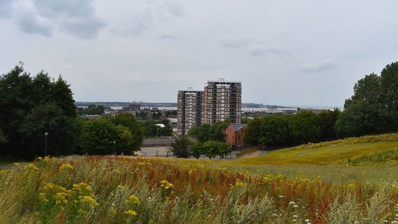 an overgrown park with a blocks of flats in the background